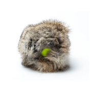 Rabbit Cover mit Tennisball