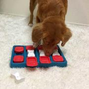 Dog Brick NEW