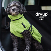 Dryup Cape Mini Kiwi